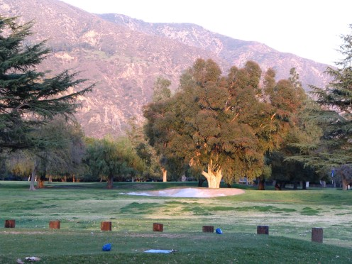 I'm ready to take up golf with moments like this at Altadena Town & Country Club.
