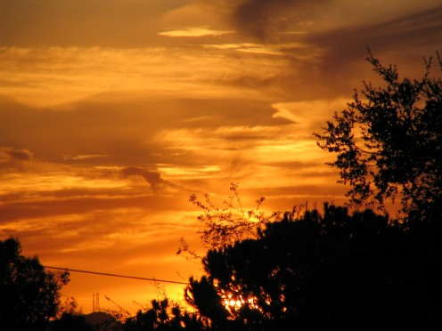 sunset2-19-09-4377